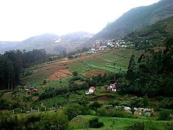 Hill View.jpg