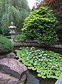 Hillwood Gardens in July (19613980238).jpg