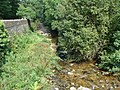 Hoaroak Water from Hillsford Bridge - geograph.org.uk - 1456622.jpg