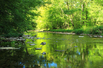 Hokendauqua Creek - Hokendauqua Creek
