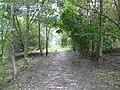 Hollingworth Footpath - geograph.org.uk - 994788.jpg