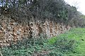 Hook Norton Ironstone Partnership Hiatt's Pit ironstone face.jpg