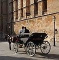 Horse-drawn carriage, Mallorca. (36558857924).jpg