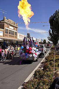 Hot air balloons in the SunRice Festival parade in Pine Ave (9).jpg