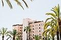 Hotel and palm trees (Unsplash).jpg