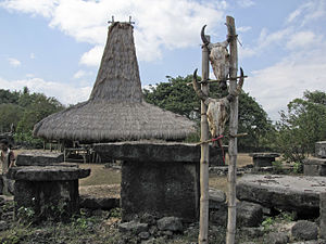 Sumbanese traditional house - A Sumbanese traditional house with its distinctive high-pitched peak where the marapu resides.