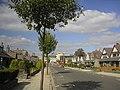 Houses in Midstocket - geograph.org.uk - 96586.jpg