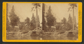 Huching's Hotel and Sentinel Rock, Yo Semite Valley, by John P. Soule.png
