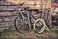 Huffy Rust Siblings 919.jpg