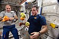 ISS-36 Luca Parmitano and Chris Cassidy with fresh fruit in the Unity node.jpg