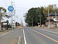 Ibaraki pref road 136 in Uchinoyama, Bando.JPG