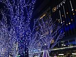 Illuminated trees in front of Hakata Station 20141225-2.JPG