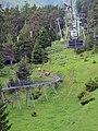 Imst - Alpine Coaster - 06.jpg