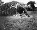 Infödingar utanför hydda. Gran Chaco, Rio Pilcomayo. Bolivia - SMVK - 004720.tif