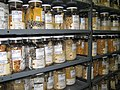 Inside the cold store - The USDA genebank in Ames, Iowa - (1).jpg