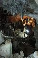 Ishigaki-Cave26s5s4592.jpg