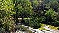 Isola d'Elba - Valle di Pomonte.jpg