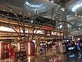 Istanbul Airport (İstanbul Havalimanı) 2019.jpg