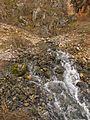 Izvorišre Berilovačke reke.jpg