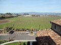 Jacuzzi Family Vineyards & Winery, Sonoma Valley, California, USA 8.jpg