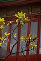 Jade Buddha Temple 21.jpg