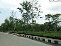 Jalan Nagar (north) Tea Estate.jpg