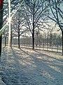 Jardin des Tuileries sous la neige 8.jpg