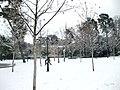Jardines del Buen Retiro (Madrid) 12.jpg
