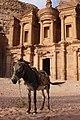 Jordan Petra (5574648554).jpg