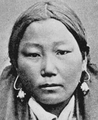 Kalmuck Mongoloid Cephalic Index 86.png