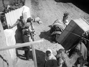 Kameler lastas med keramiklådor. Milia - SMVK - C00758.tif