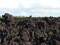 Kapoho lava flow (3).jpg
