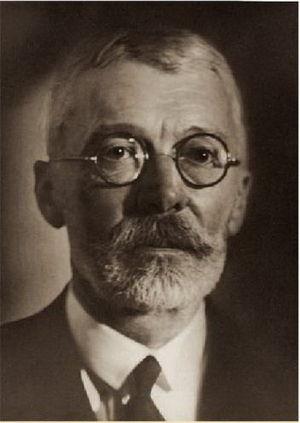 Gyula Károlyi - Image: Karolyi Gyula