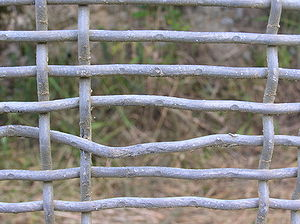 Zealandia (wildlife sanctuary) - Example of small defect in fence mesh