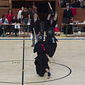 Kasahara Cup 2013 - 20130929 - Kendo competition in Geneva 22.jpg