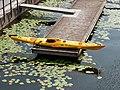 Kayak, Stockholm (P1090591).jpg