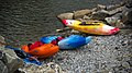 Kayaks (37144380).jpeg