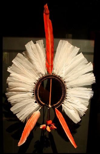 Kayapo - Kayapó headdress, or ákkápa-ri, ca. 1910, National Museum of the American Indian