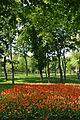 Kirovograd Dendropark 08 (YDS 4214).JPG