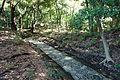 Kiso-yama path - Koishikawa Korakuen - DSC09205.JPG