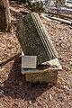 Klagenfurt Villacher Vorstadt Botanischer Garten Syringodendron SP 29012018 2499.jpg