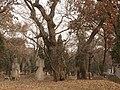 Kong Shangxian - seen from WNW - P1060124.JPG