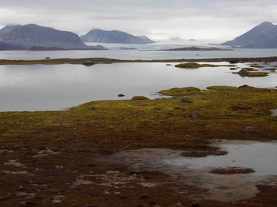 Kongsfjorden from Blomstrandhalvoja