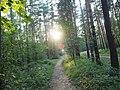 Kotelniki, Moscow Oblast, Russia - panoramio (114).jpg
