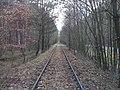 Kujan -Dorotowo kilka dni przed demontażem linii kolejowej. - panoramio.jpg