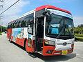 Kumho Bus Lines Wando Seaweeds Expo 2014.JPG