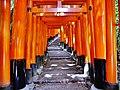 Kyoto Schrein Fushimi-Inari-taisha Torii 40.jpg