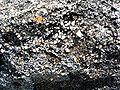 La Clere Grès Yprésis grains 0,5 cm.jpg