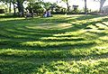 La Hougue Bie midsummer maze.jpg