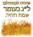 LagBaOmer.PNG